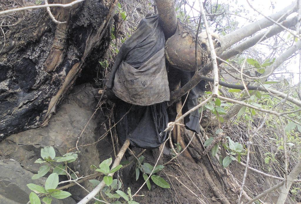 Women Discover Decomposing Human Remains Hanging From A ...