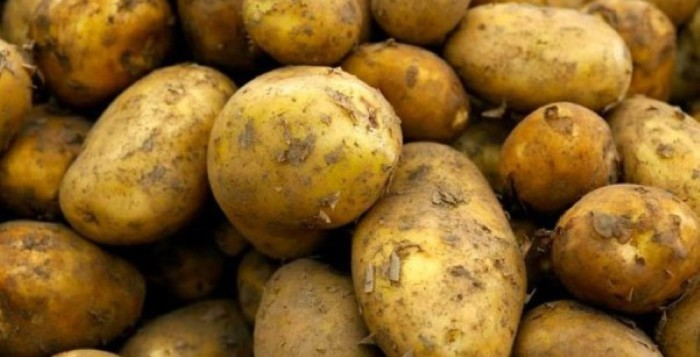 ... Uses Potato As Contraception – Finds Roots Growing Inside Her Vagina